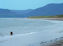 Rossbehy Beach Kerry Ierland